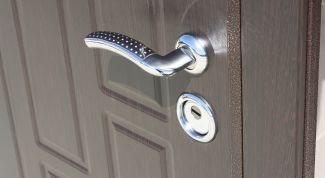 Steel door: features and selection rules