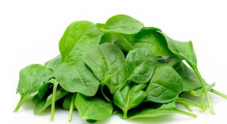 Useful properties of spinach juice