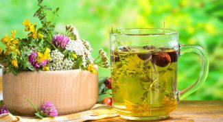 The pros and cons of traditional medicine