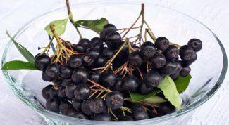 Какие свойства у черноплодной рябины