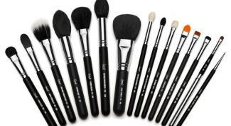 Variety of brushes for perfect tone face