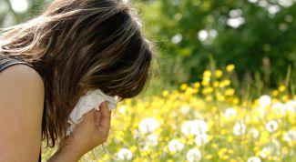 Как победить весеннюю аллергию