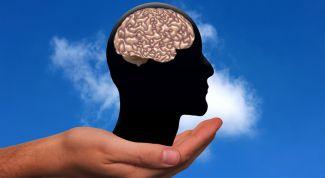 Как работает мужской мозг?