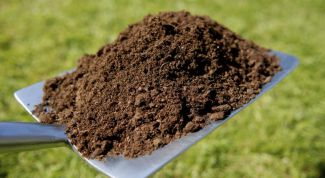 What distinguishes compost from the compost