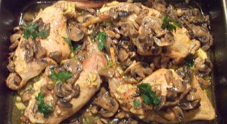 Rabbit with oyster mushrooms