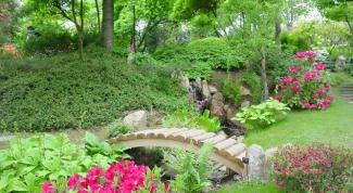 The garden design