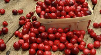 Cranberry — a source of beauty and health