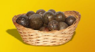 Propolis and its useful properties