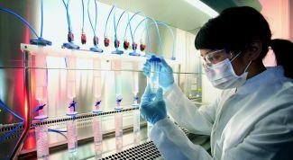 Стволовые клетки: миф или реальность?