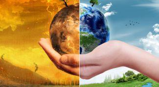 Бизнес-идея: консультант по экологии и озеленению