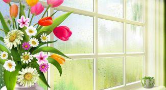 Как защитить дом от солнца летом