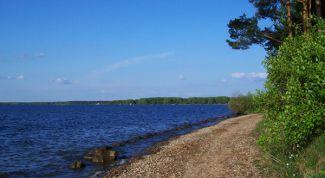 Отдых на Минском море, поиск попутчика