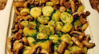 Молодая картошка с грибами в духовке