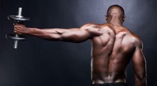 Профессиональный спорт и здоровый образ жизни – выбор современного человека