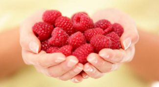 The benefits and harms of raspberry