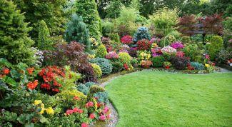 Планируем сад:  как сделать сад красивым