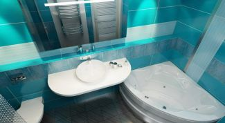 The main advantages and disadvantages and a combined bathroom