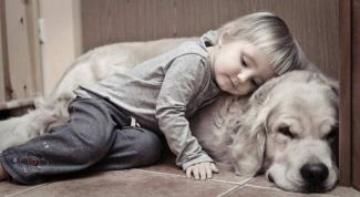 Pets in the lives of children