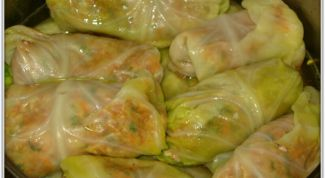 Classic meat stuffed cabbage rolls