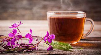 Иван-чай: лечебные свойства напитка
