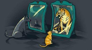 Низкая самооценка: как избавиться от проблемы