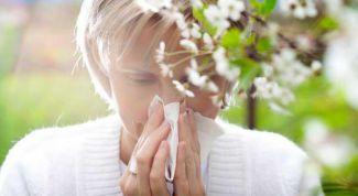 Аллергия и общество