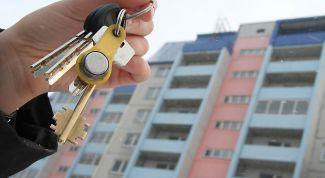 Как правильно снять квартиру: 7 правил съемщика