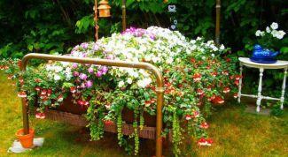Клумба из старой мебели: нестандартная обстановка для сада