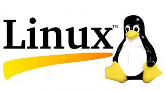 Особенности ОС Linux