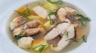 Как приготовить настоящую рыбацкую уху