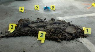 Психология осмотра места преступления