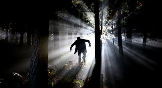 Фильмы про охоту на людей