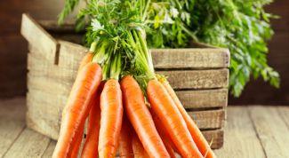 Как сохранить морковь до весны