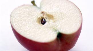 Яблочные косточки: польза и вред