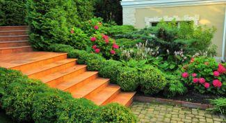 Стилевые сады