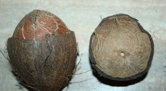 Как открыть кокос за две минуты