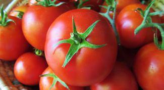 Лучшие сорта томата для посадки на дачном участке: «Король королей»