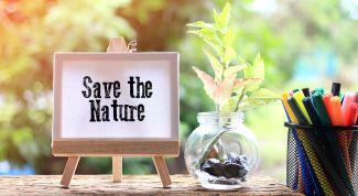 Как заботиться о природе: 7 рекомендаций