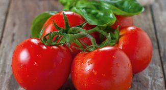 """Как выращивать томат сорта """"Красная шапочка"""""""