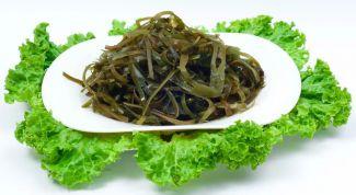 Чем полезны морские водоросли