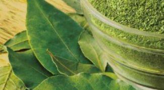 Лавровый лист лечебные свойства