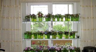 Как сделать стеллаж для рассады и цветов