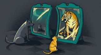 Как поднять самооценку: несколько эффективных способов