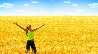 Три простые и эффективные привычки счастливого человека