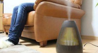 Как увлажнить воздух в квартире без специальных устройств