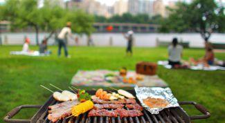 Пикник без неприятных последствий: как защититься от клещей