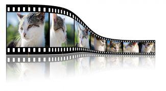 3 бесплатных и удобных видеоредактора