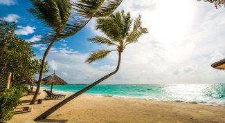 Чем привлекают Мальдивские острова
