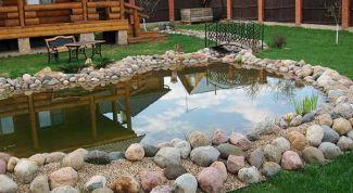 Как обустроить водоем на даче