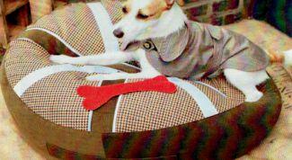 Как сшить подушку для собаки